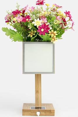 OLED GRADEN 桌面装饰创意灯