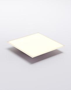 100mm*100mmOLED照明面板[OLED光源]